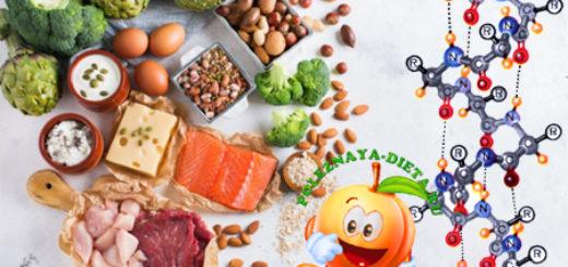 белок, белковые продукты